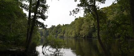 Edisto River, canoe trip, overnight trip